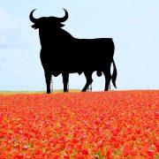 Dieses Bild hat ein leeres Alt-Attribut. Der Dateiname ist TREPTOW_KOLLEG-Spanisch-4-180x180-1.jpg